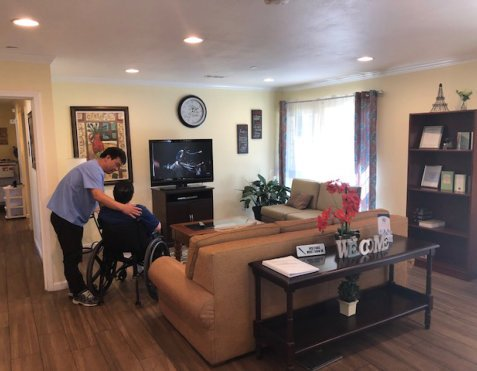 Nurse and elderly in the living room